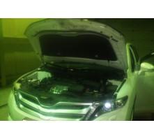 Упоры капота для Toyota Venza